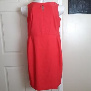 NWT New Jones Studio Dress